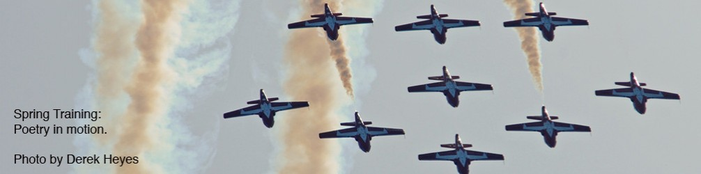 Snowbirds...Poetry in Motion